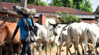 Quit notice: Tension as Fulani react to Sunday Igboho's Friday deadline, Oyo govt speaks