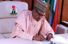 Buhari ignores national assembly, appoints acting NDE DG